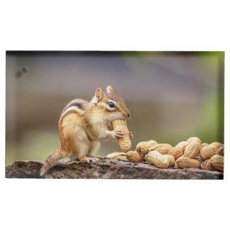 Soporte Para Tarjetas De Mesa Chipmunk que come un cacahuete