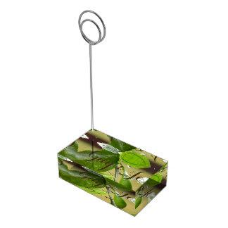 Soporte Para Tarjetas De Mesa Portatarjetas de la tabla verde de la lluvia de