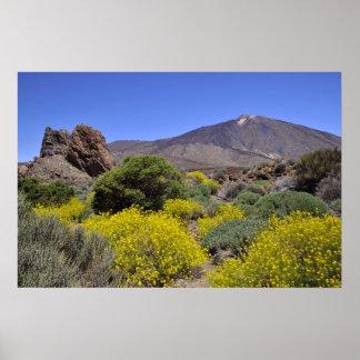 Soporte Teide en Canarias Póster