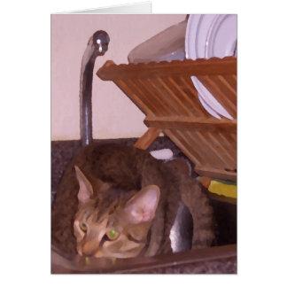 Sous-Cocinero del gato que oculta en el fregadero Tarjeta De Felicitación