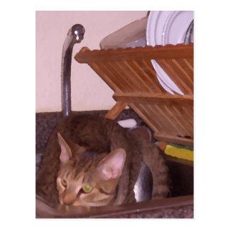 Sous-Cocinero del gato que oculta en el fregadero Postal