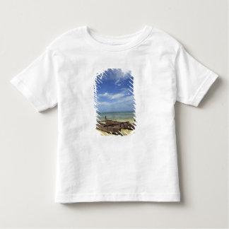 South Pacific, Polinesia francesa, Moorea. Camisas
