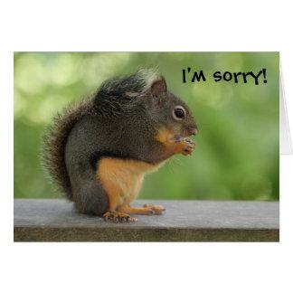 Soy ardilla triste de la disculpa