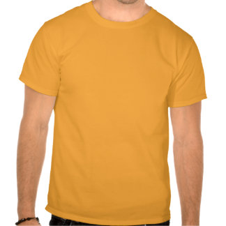 Soy feo. Usted es gordo Camisetas