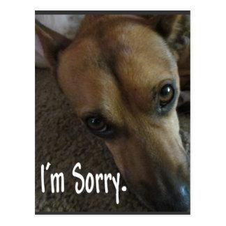 Soy perro triste triste postal