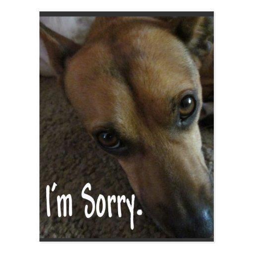 Soy perro triste triste postales