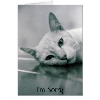 Soy tarjeta triste del gato