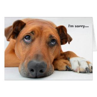 Soy tarjeta triste del perro