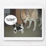 ¡Soy un trato de DemoCAT con él! Tapetes De Raton