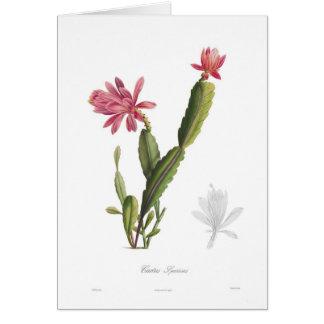 Speciosus del cactus tarjeta de felicitación