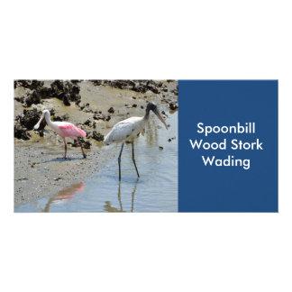 Spoonbill y cigüeña de madera que vadean tarjeta fotográfica