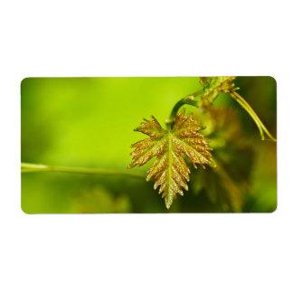 Spring Vine Leave Etiqueta De Envío