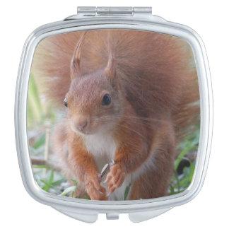 Squirrel ~ Écureuil ~ ardilla ~ by JL GLINEUR Espejo Compacto