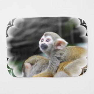 squirrel-monkey-39.jpg paños para bebé