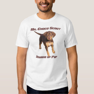 Sr. Choco Scout: Guárdese de perrito Camisetas
