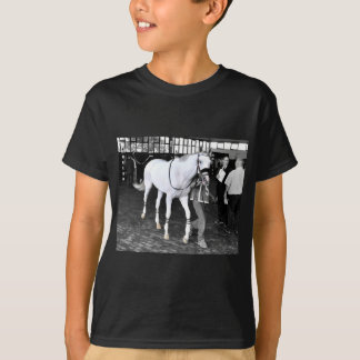 Sr. Jordania Camiseta