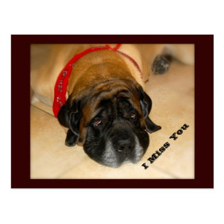 Srta. inglesa triste You Postcard del perro I del Postal