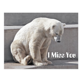 Srta. You del oso polar I Postal