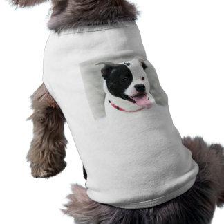 Staffordshire Terrier americano Camiseta Sin Mangas Para Perro