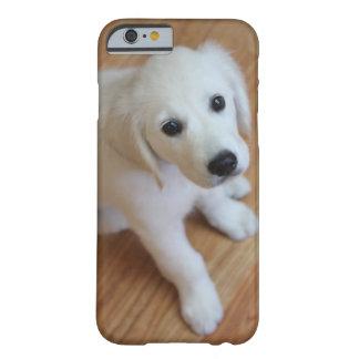 su foto preferida del mascota en un caso del funda de iPhone 6 barely there