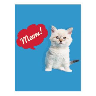 Subtítulo lindo del maullido del gatito postal