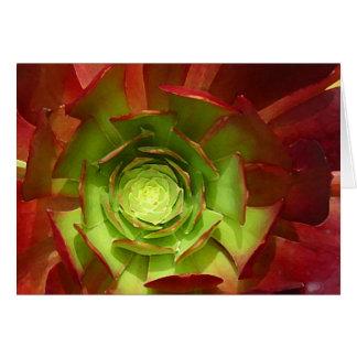 Succulent rojo y verde del Amy Vangsgard Tarjeta De Felicitación