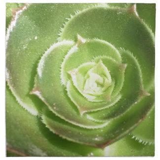 Succulent verde servilleta de tela