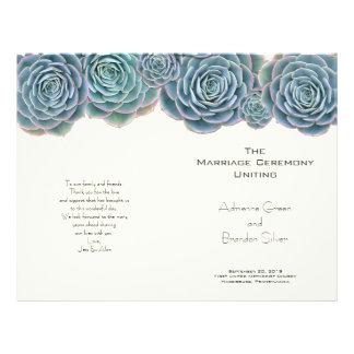 Succulents azulverdes doblados casando programas