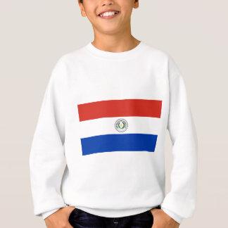 Sudadera Bandera de Paraguay - Bandera de Paraguay