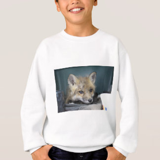 Sudadera Caja del teléfono del Fox