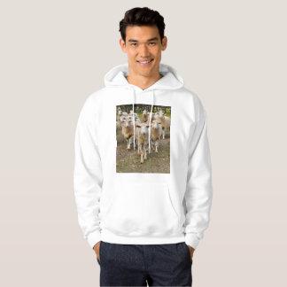 Sudadera Las ovejas vienen marchando en Hurrah,