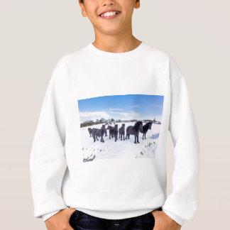 Sudadera Manada de los caballos negros del frisian en nieve
