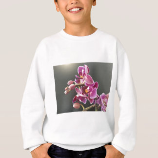 Sudadera orquídea