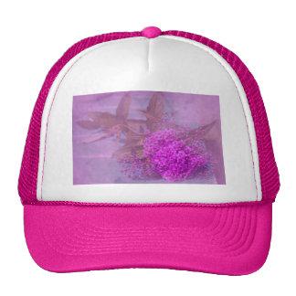 sueño lila de verano gorra