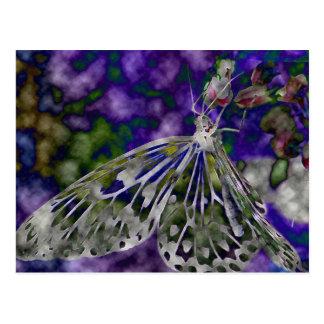 Sueños de la mariposa tarjeta postal