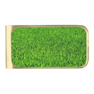 Sujeta Billetes Dorado Textura verde de la hierba del verano