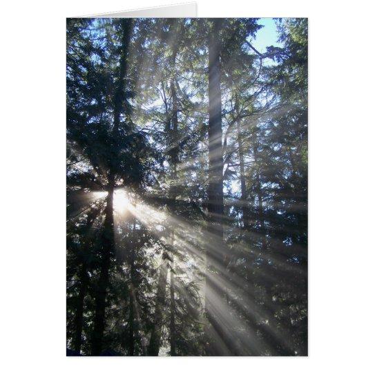 Sun a través del Greenbelt Tarjeta De Felicitación