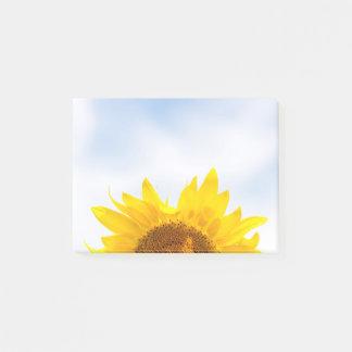 Sun encima de notas de post-it del girasol