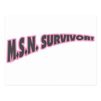 Superviviente de MSN en rosa Tarjeta Postal