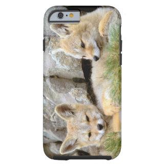 Suramérica, Chile, Torres del Paine Funda Resistente iPhone 6
