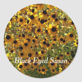 Susan observada negro florece la foto sus pegatina redonda