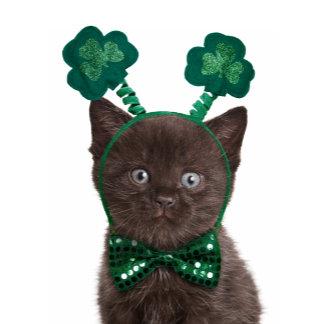 Shamrock Kitten Cards & Gifts