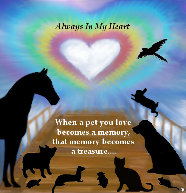 Rainbow Bridge Pets
