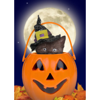 Trick or Treat Cards & Gifts