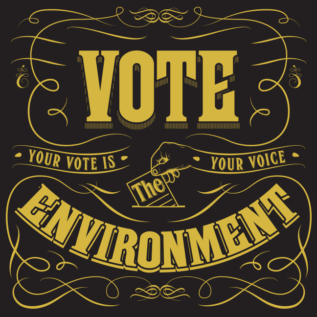 Your Vote is Your Voice 2