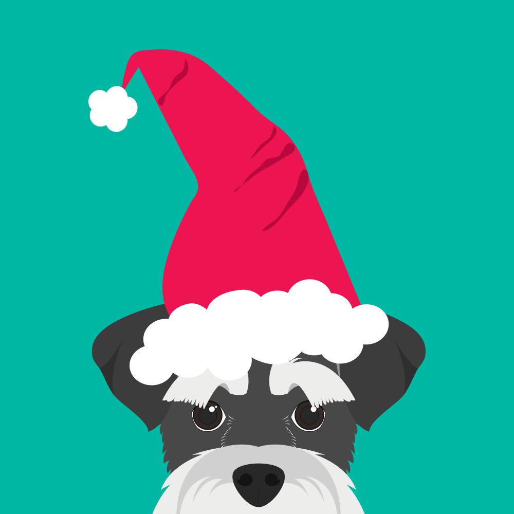 Santa Schnauzer