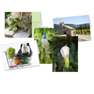 Greeting Cards, invitations, etc