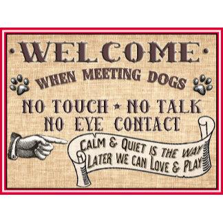 Doggie Door Mats