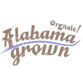 Organic! Series