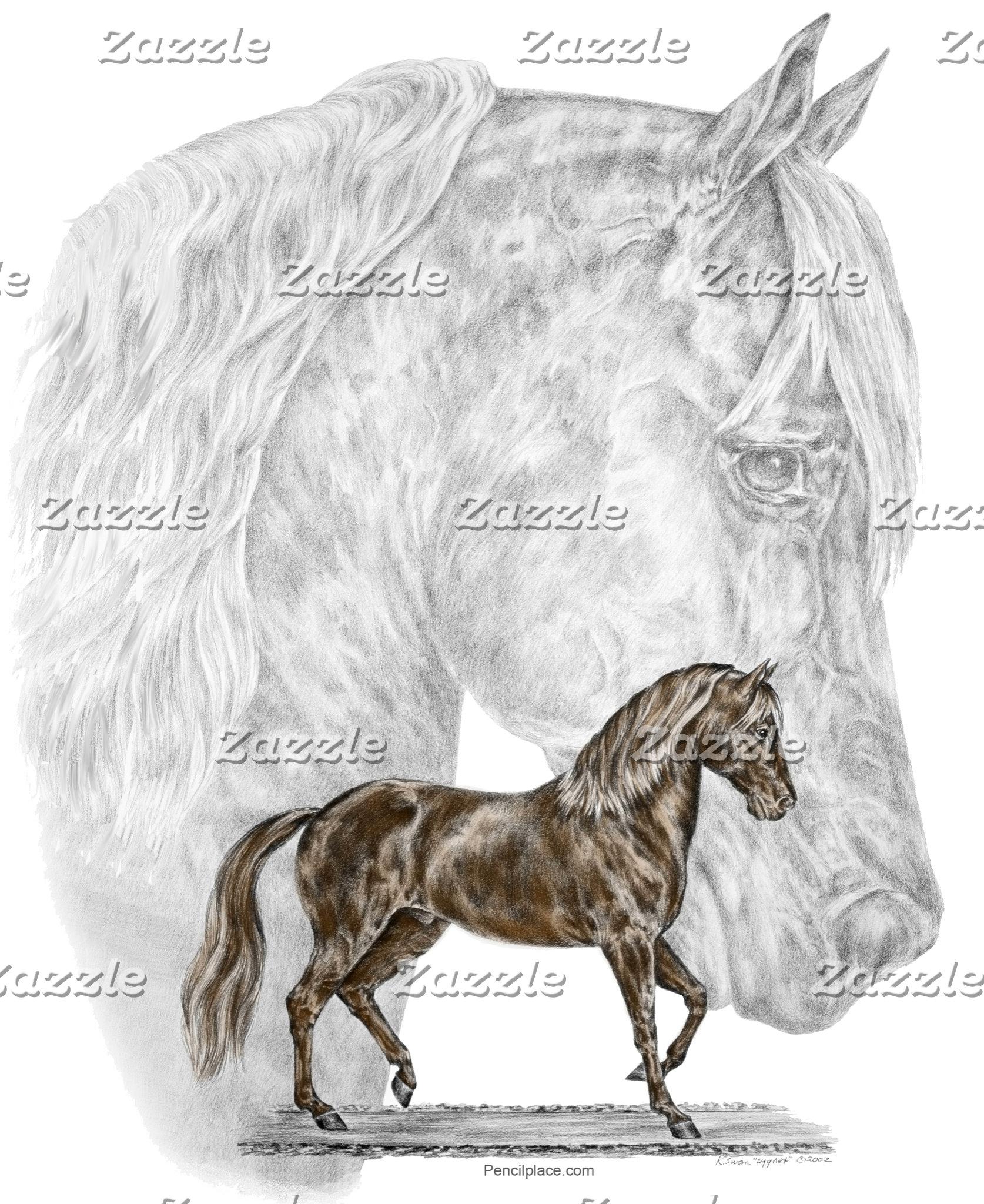 Paso Fino Horse Art